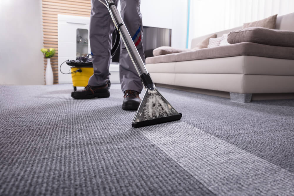 Same Day Carpet Cleaning San Diego